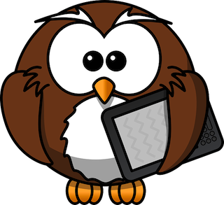 Kindle Owl